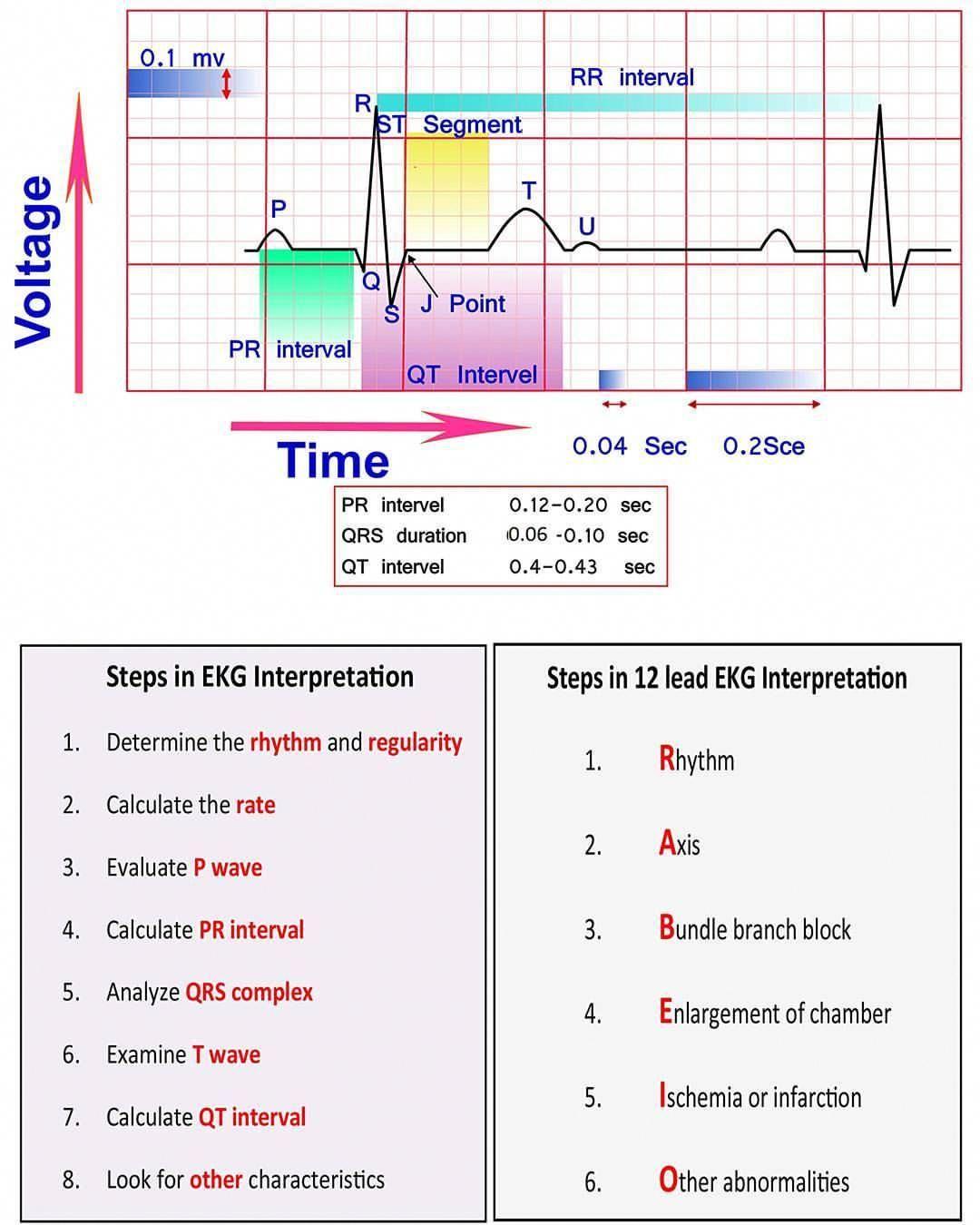 lpn classes near me nursingschools Cardiac nursing