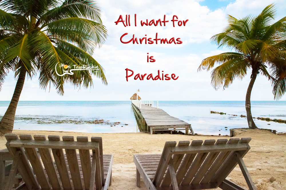 All I Want For Christmas Is Paradise At The Beach Quotes