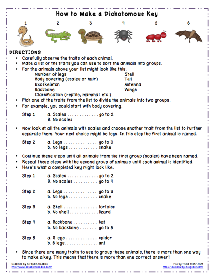 Here's a dichotomous key for identifying organisms from the planet ...