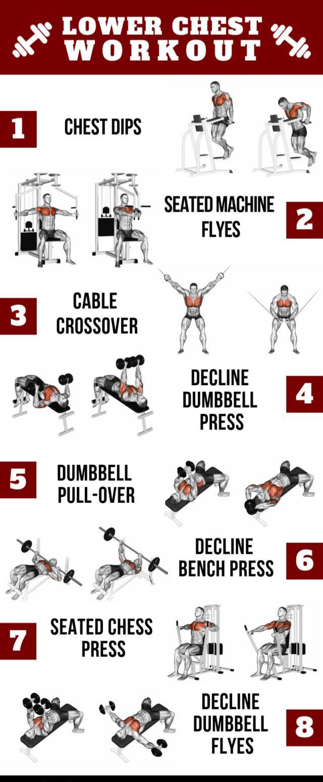 Ultimate Upper Chest Workout Plan for Mass in 2020 Lower