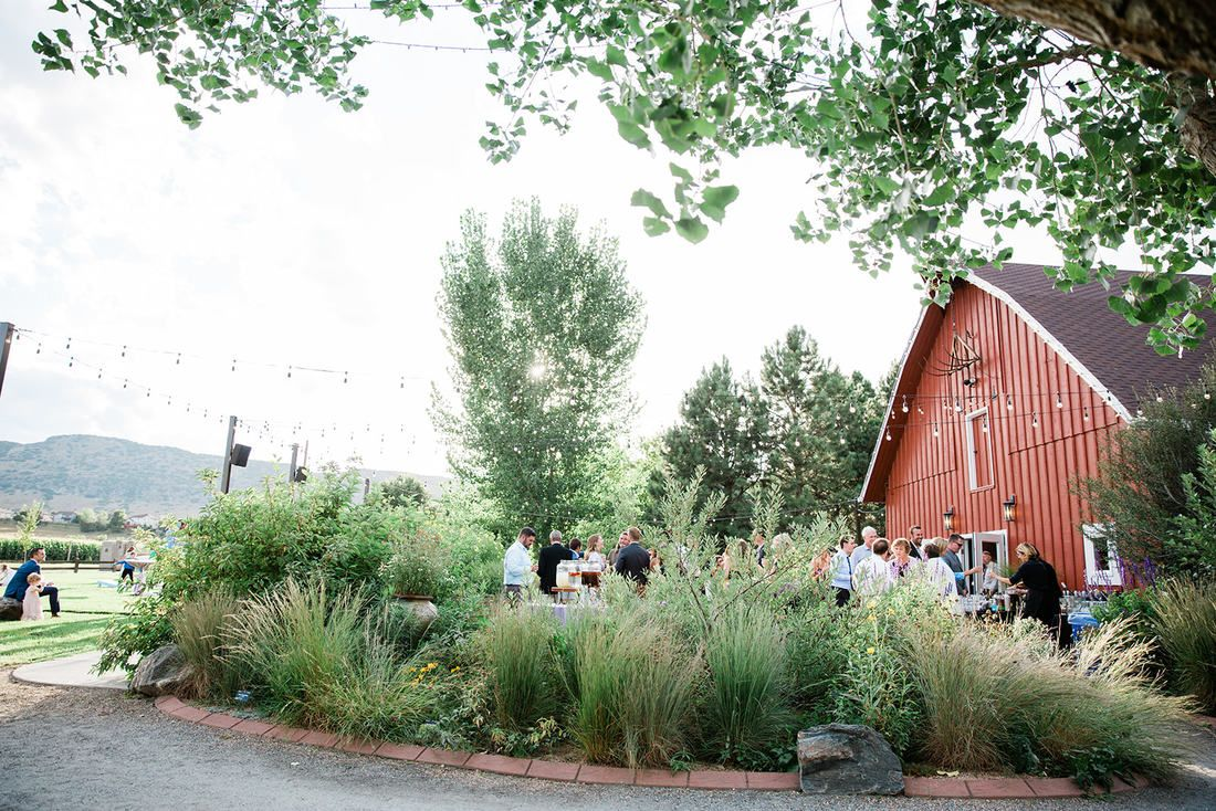 3c3dd745d87c542ce5bb0cf5a371a6e4 - Denver Botanic Gardens Chatfield Farms Events