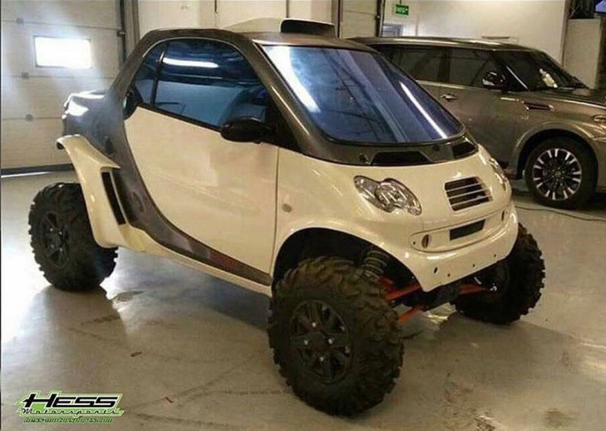 Smart Rzr With Images Smart Car Body Kits
