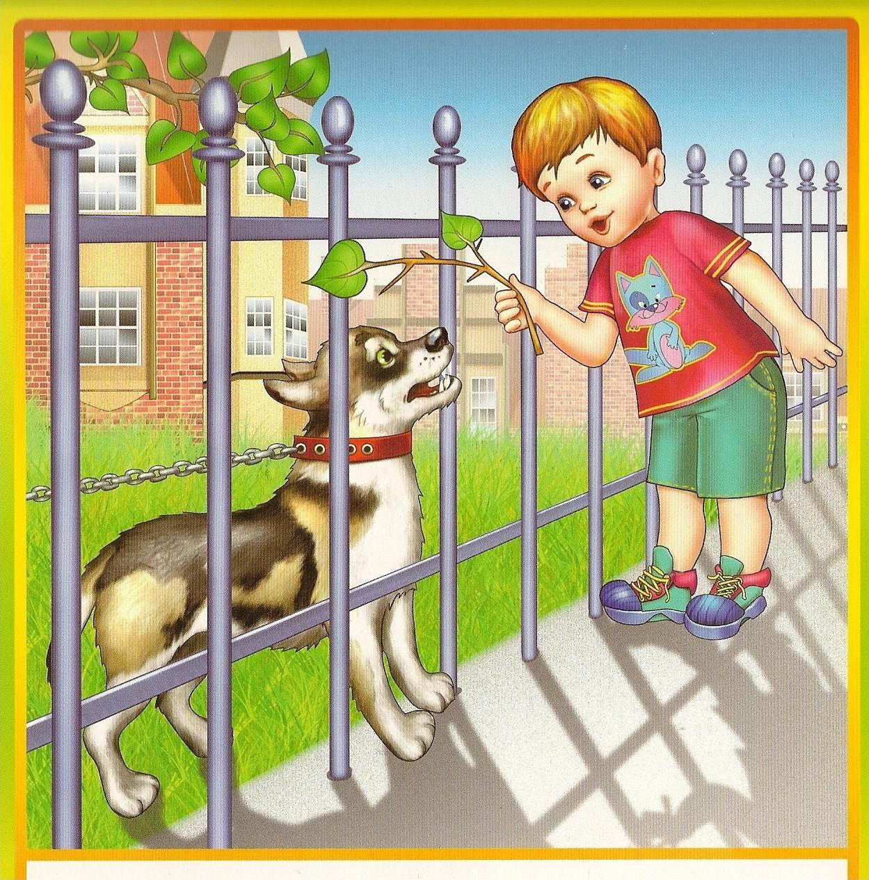 Правила поведения с животными для детей в картинках