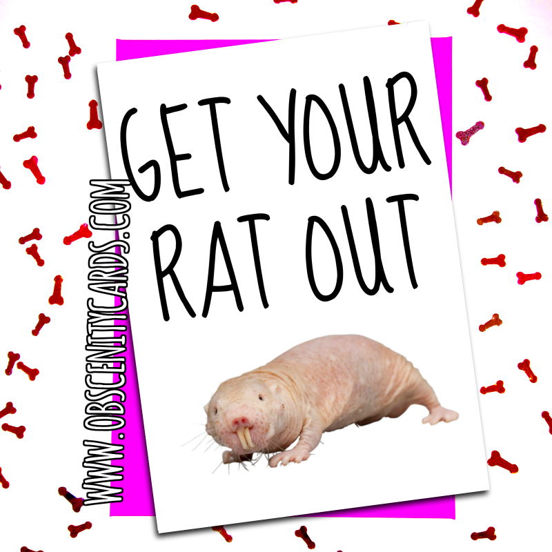 funny valentines day card get your rat out valentine's or