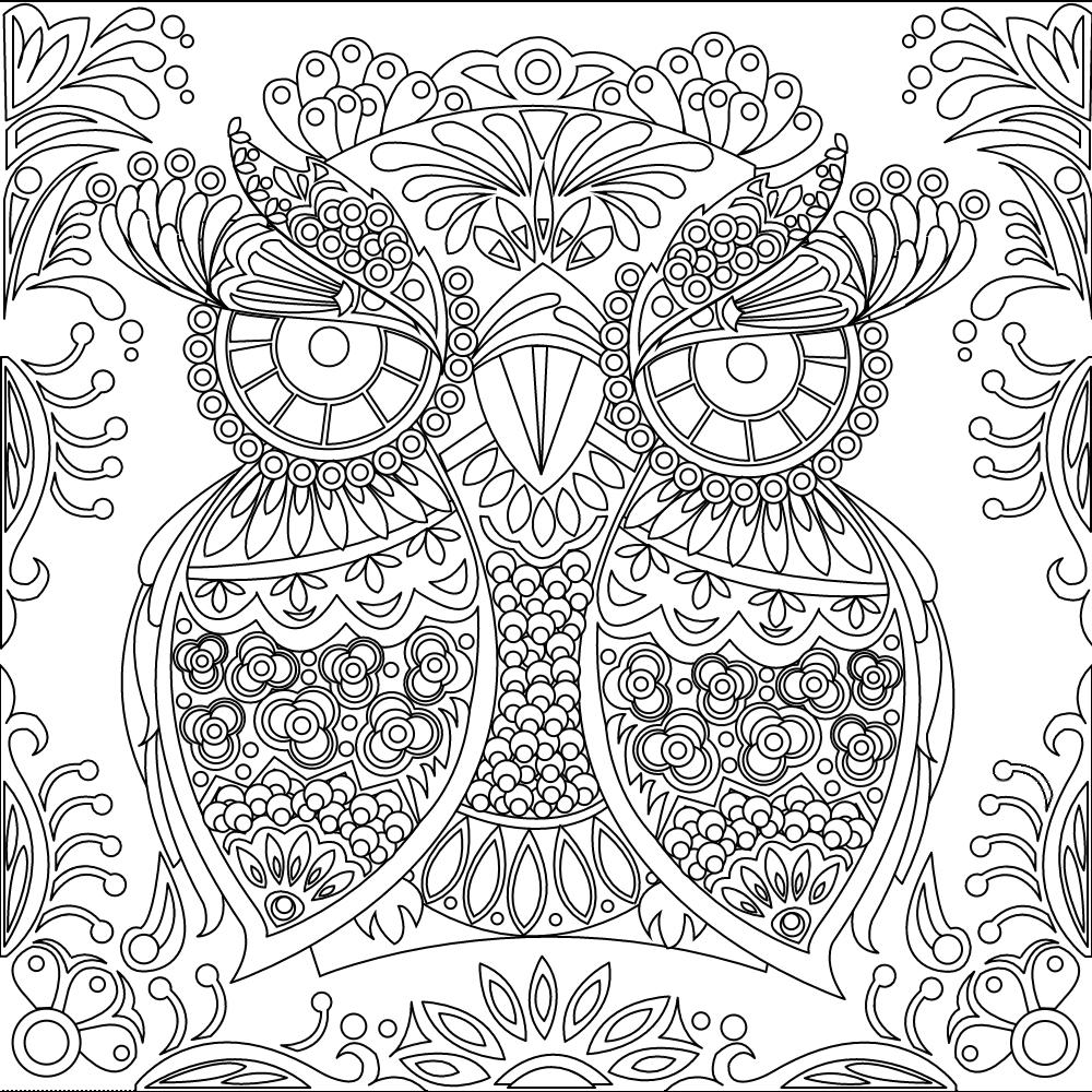 owl coloring page malbilder ausmalen f r erwachsene. Black Bedroom Furniture Sets. Home Design Ideas