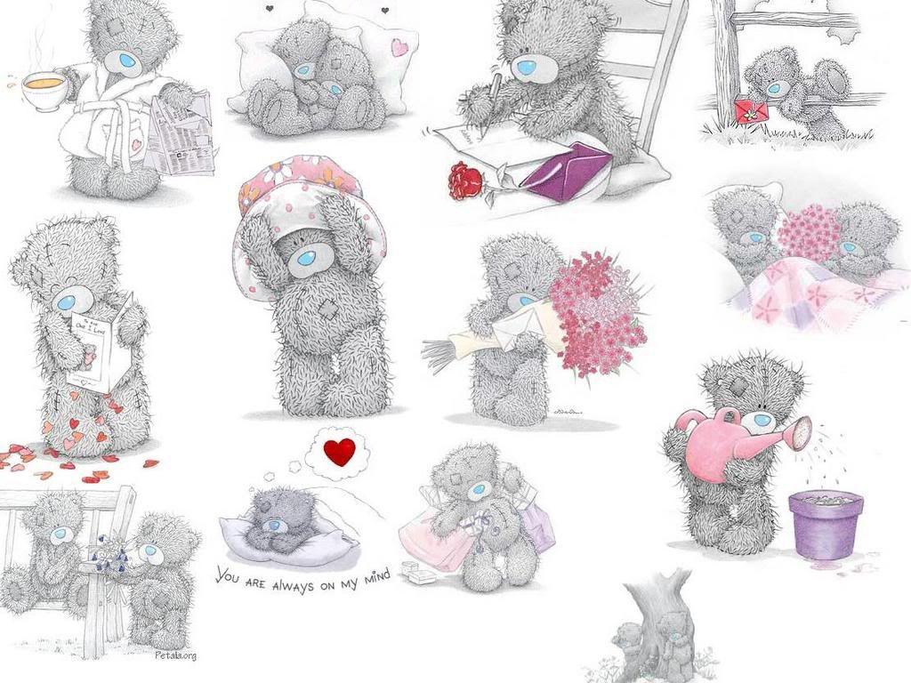 Картинки мишки тедди для стикеров по одному на картинке