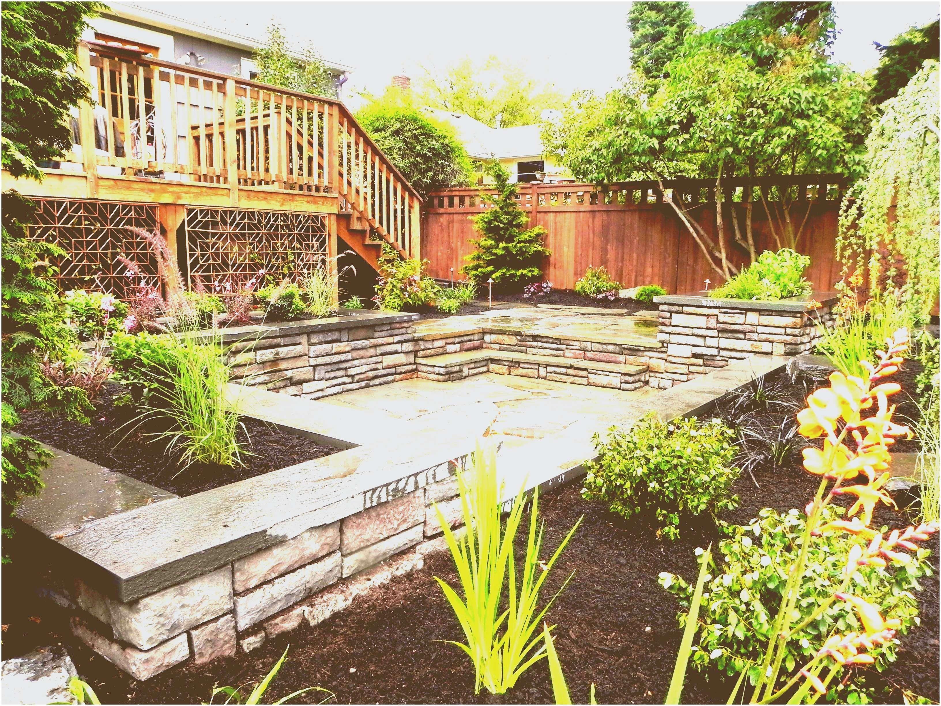 Formidable Backyard Ideas No Grass | Small yard ... on Cheap Backyard Ideas No Grass  id=44251
