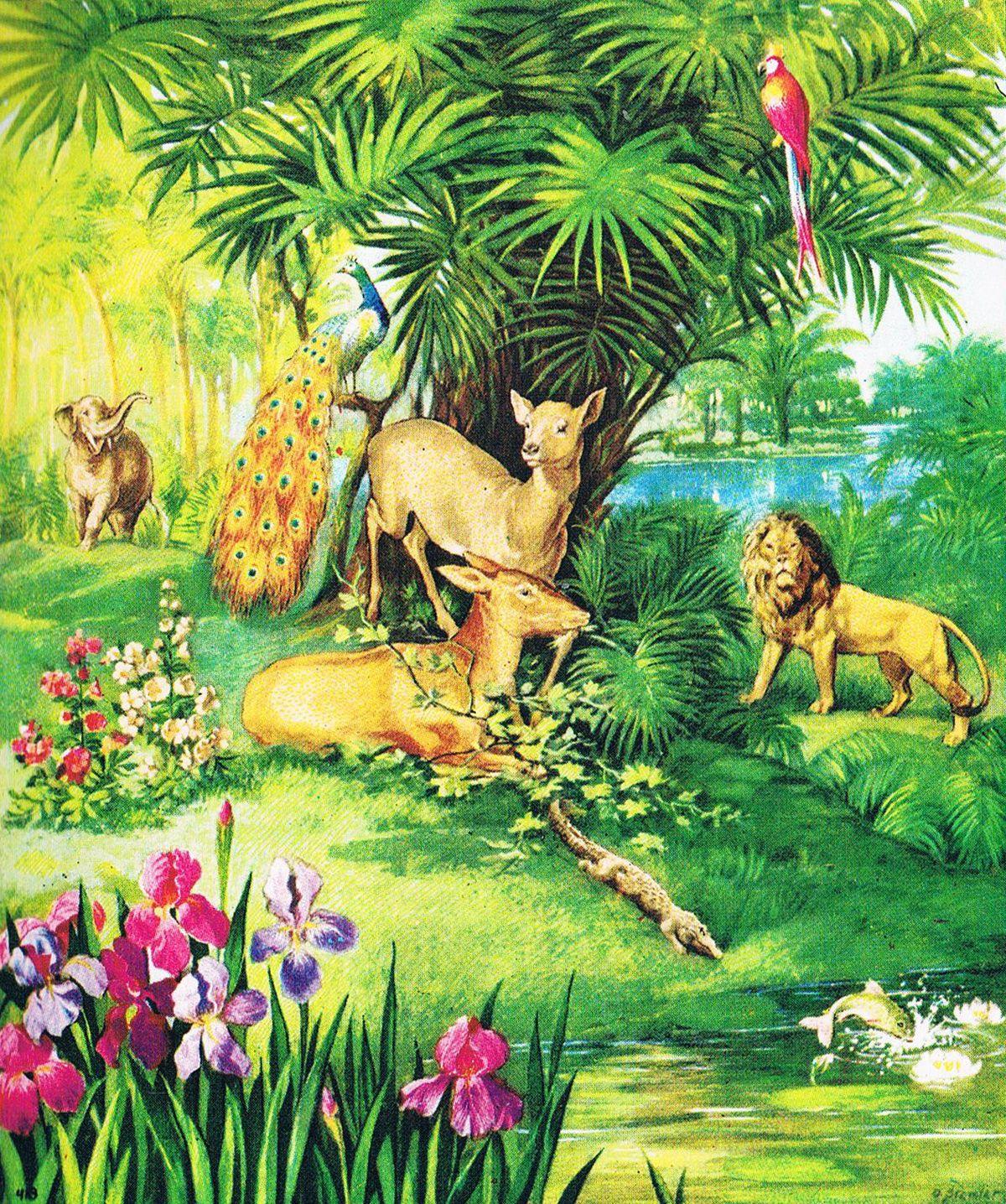 Das Paradies Im Garten Eden Zeltmacher Garten Eden Eden Paradies