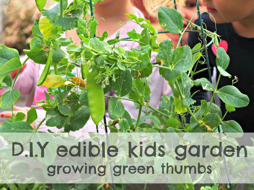 D.I.Y Edible Garden