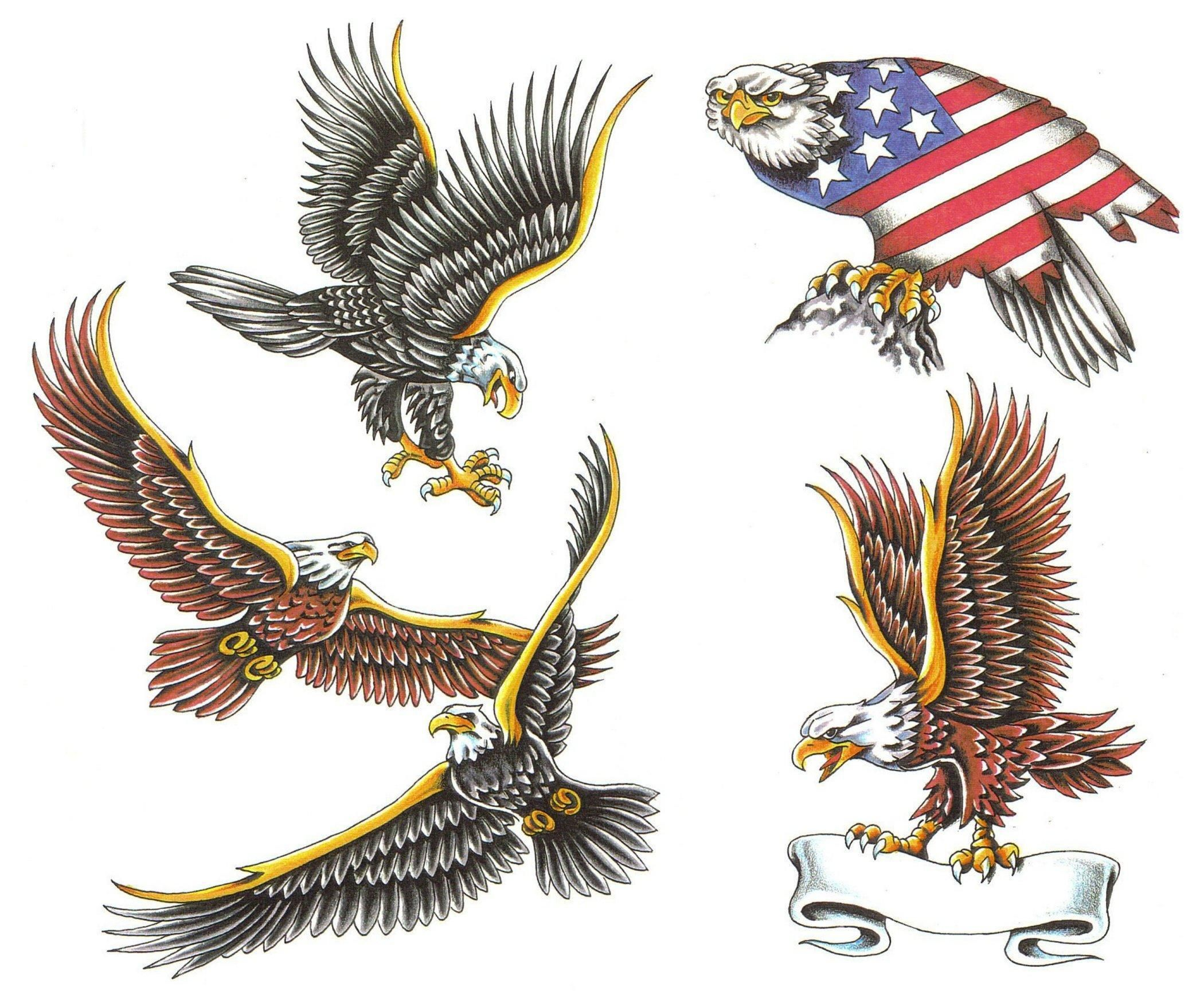 American eagle tattoos high quality photos and flash - Eagle Tattoo Designs The Bald Flying Eagle S