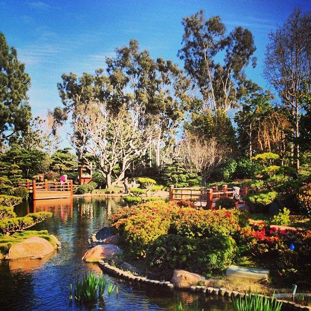 Cal State Long Beach Japanese Garden Los Angeles Ca