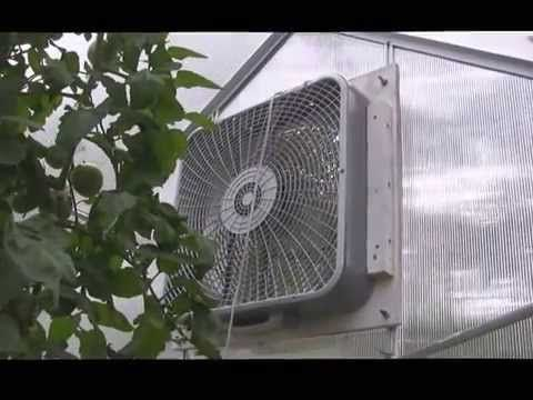 Harbor Freight Greenhouse Fan Harbor Freight Greenhouse Greenhouse Plans Home Greenhouse