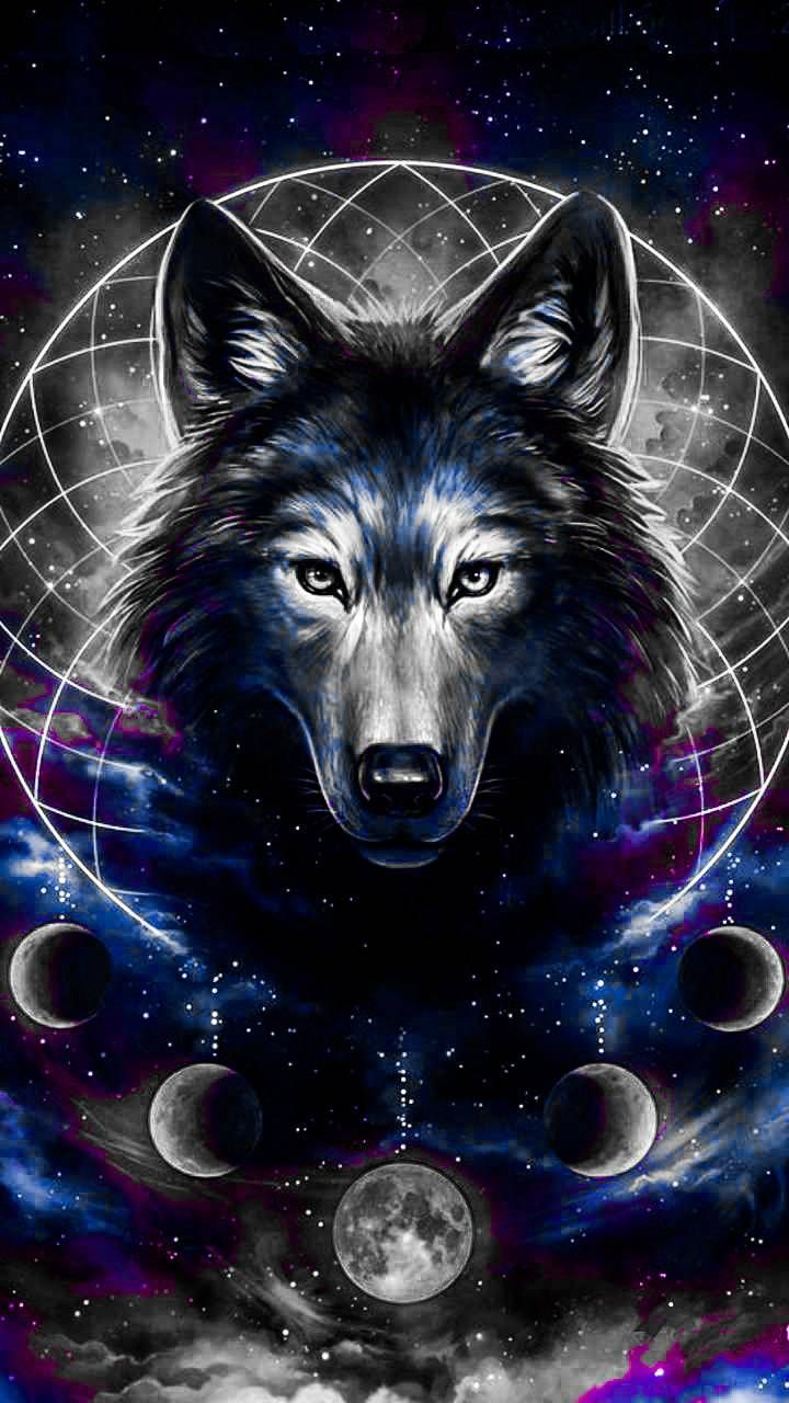 Download Galaxy Wolf Wallpaper By 40888 45 Free On Zedge Now Browse Millions Of Popular Beautiful Wallpapers An Wolf Artwork Wolf Wallpaper Wolf Painting