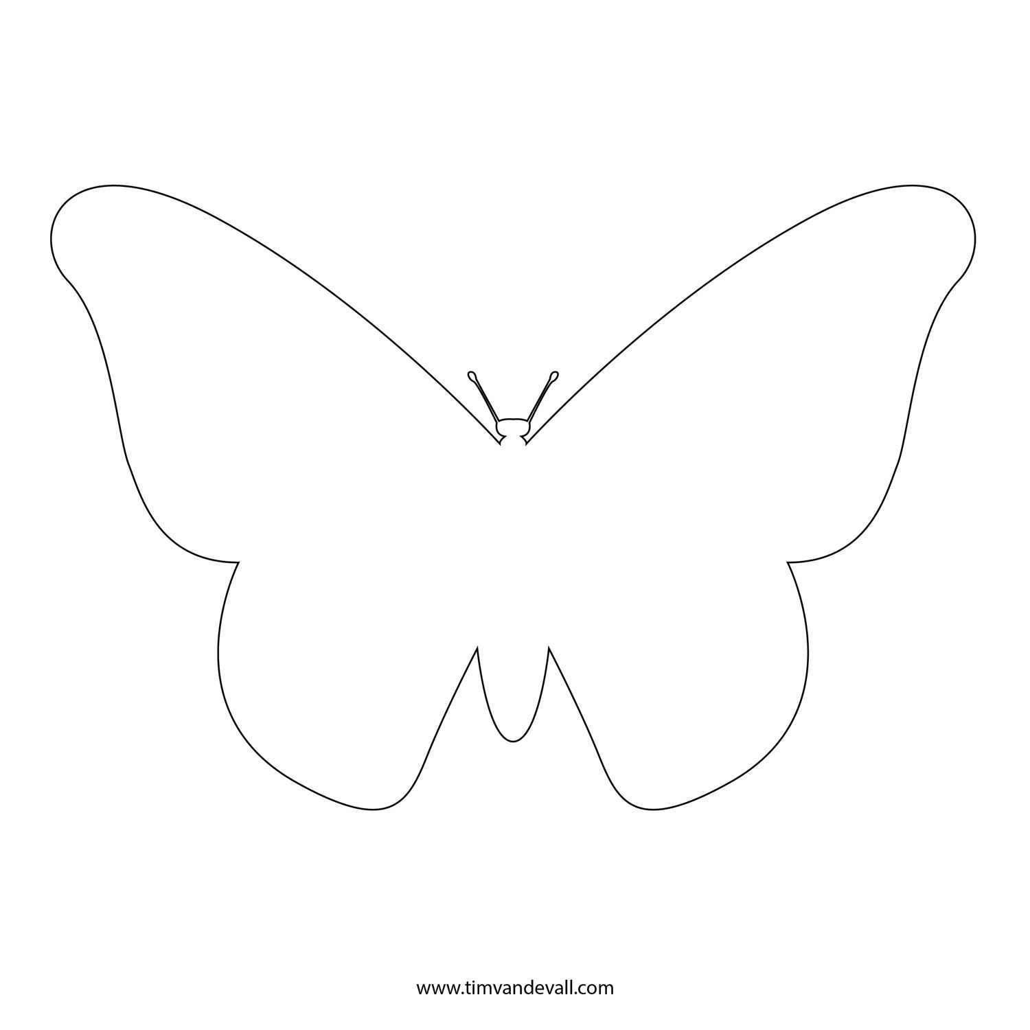 Superior Butterfly Outline