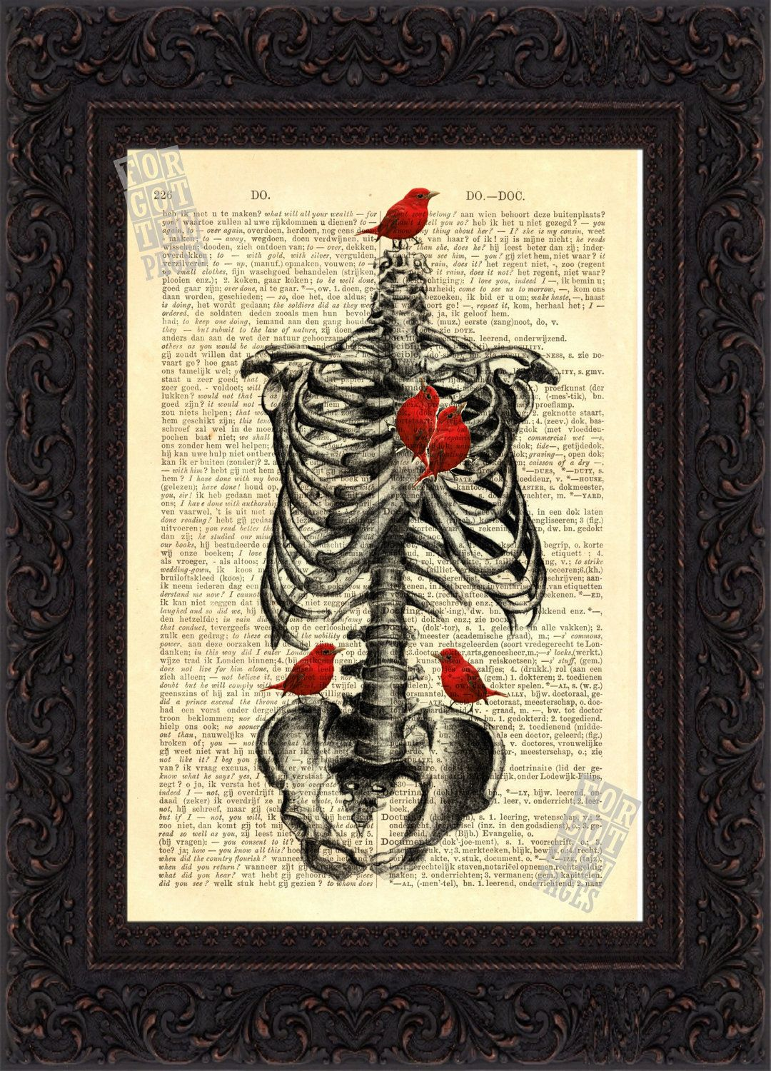 Anatomical Print - Rib Cage with Red Bird Heart mixed media Print on ...