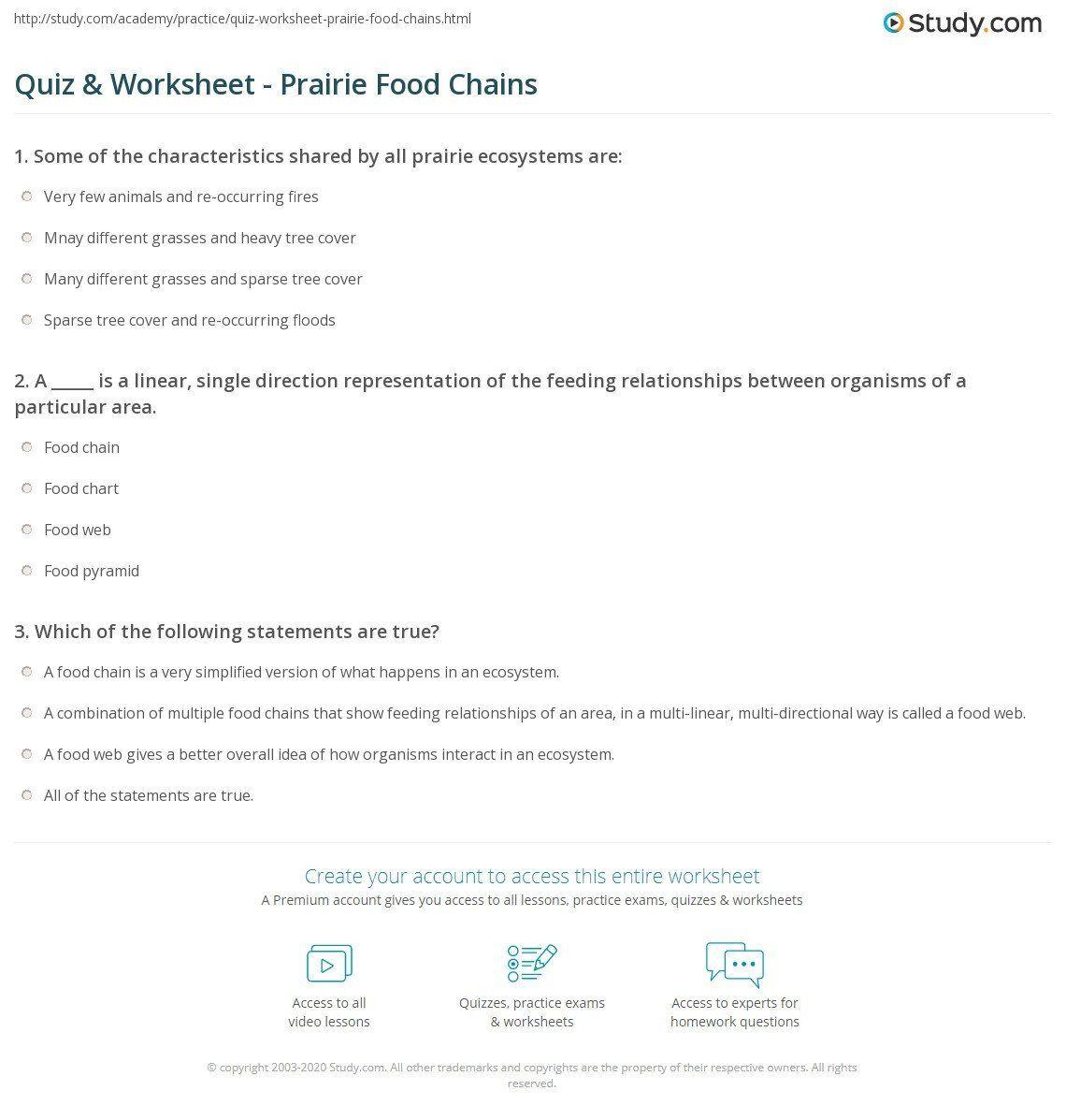 Food Web Worksheet Answers Food Chain Quiz Worksheet In 2020 Food Web Worksheet Food Web Worksheets