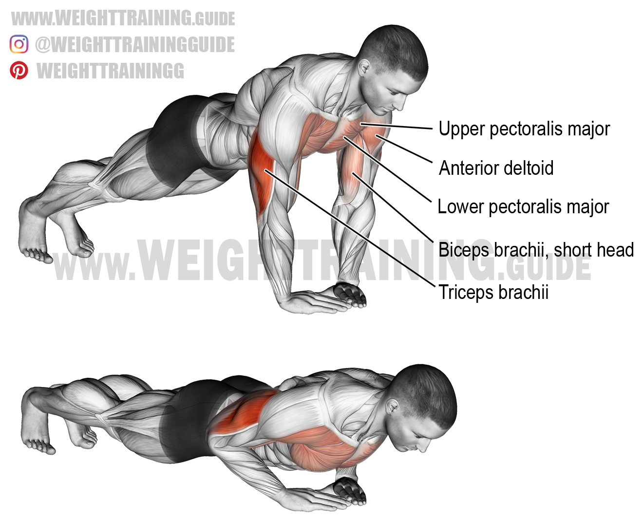 Diamond push-up exercise instructions and video | Fitnessübungen ...