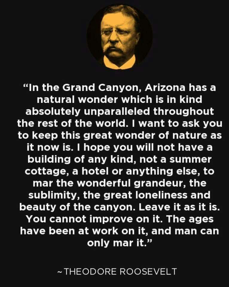 M Teddy Roosevelt On The Grand Canyon Patriotic Quotes Natural Wonders Grand Canyon