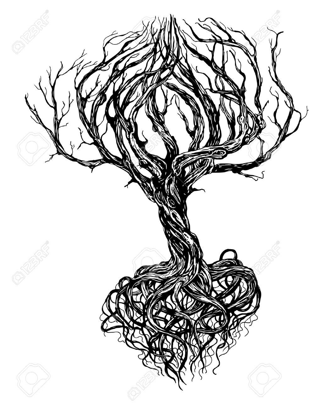 30565000-Hand-drawn-old-bare-tree-with-crooked-branches ...