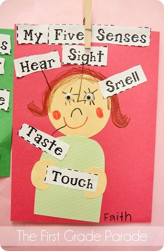 Practice    labelling  Five Senses craft Children use