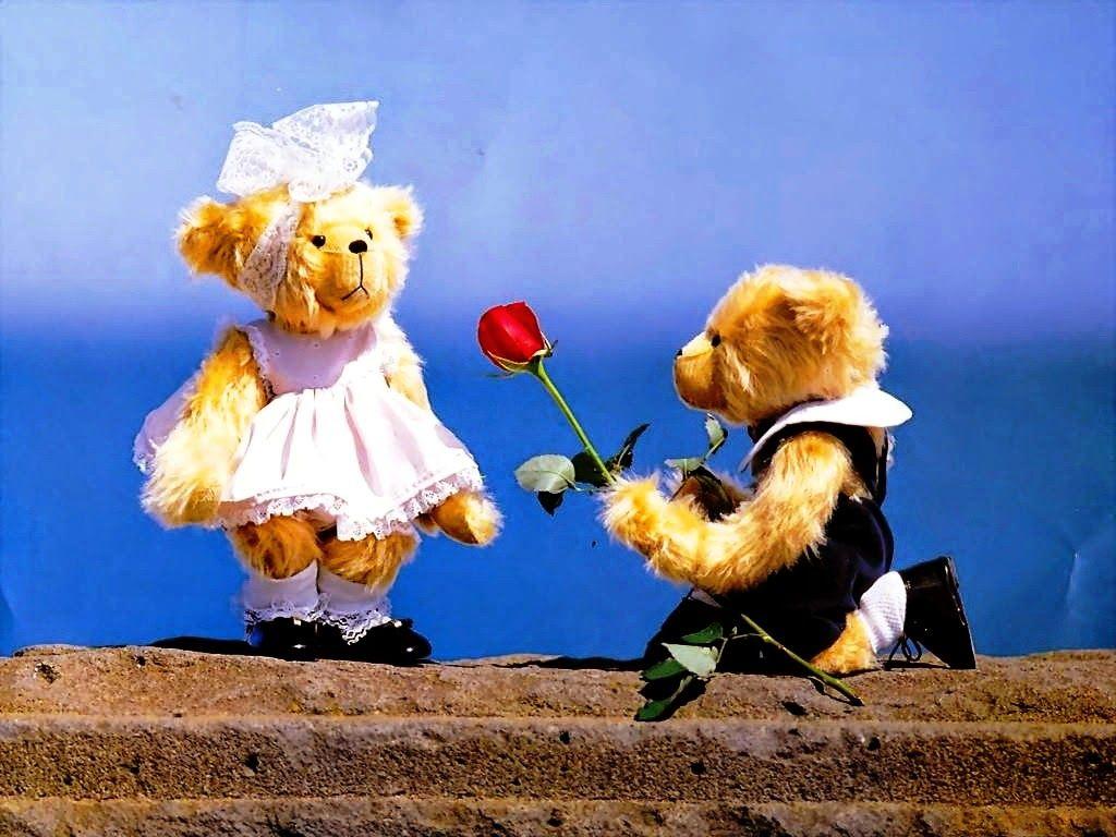 Teddy proposing cute teddy day hd wallpaper images teddy bear day teddy proposing cute teddy day hd wallpaper images altavistaventures Images