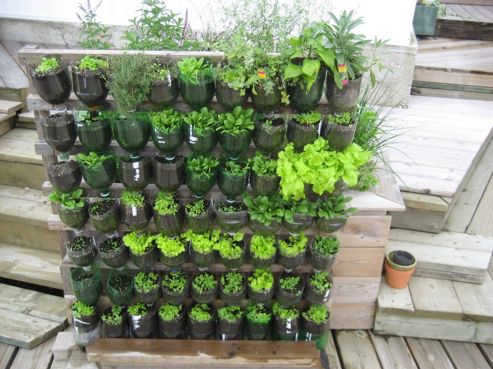 verticaal de hoogte in je gaat de buitenmuur schutting of afscheiding benutten door hier het ware een tuintje tegen aan te maken Een verticale tuin