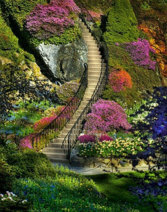 gorgeous+gardens | ... missouri would look gorgeous with paths and designs like this gorgeous