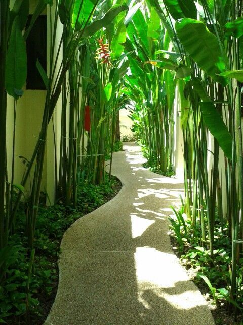 Photo of 42 amazing ideas for DIY garden paths and walkways
