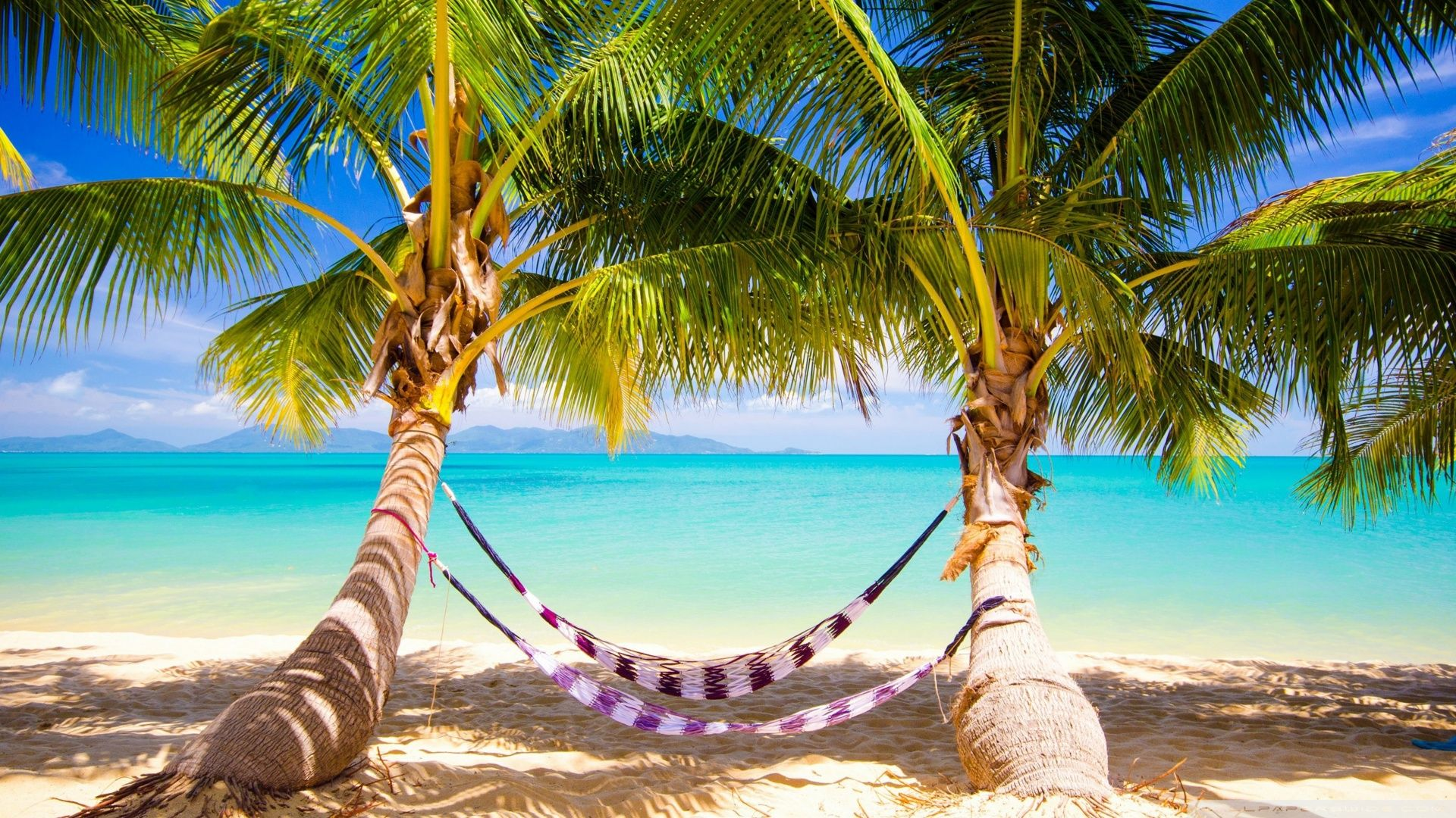 Hd wallpaper xmas - Tropical Beach Hammock Wallpaper Hd Wallpapers Hd