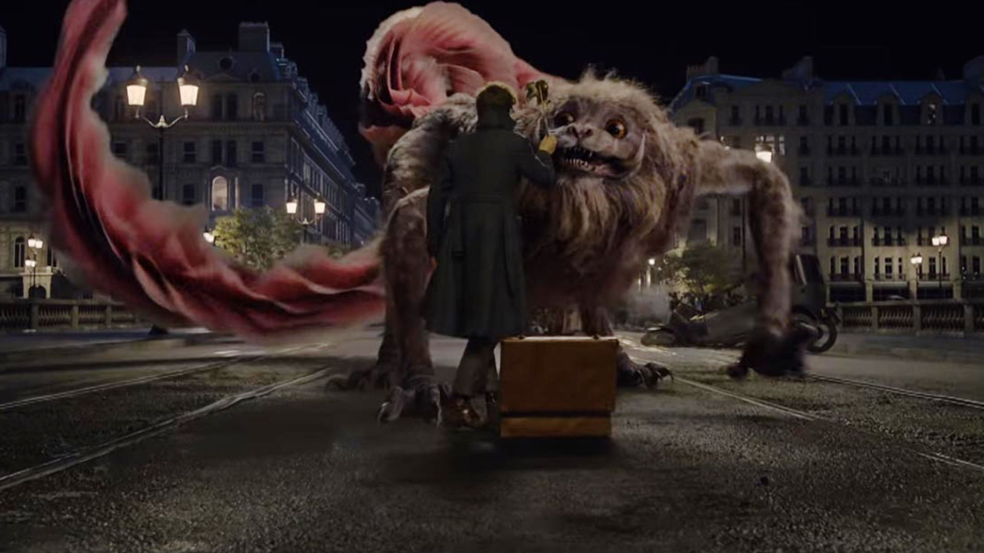 Pin On Fantastic Beasts And Where To Find Them