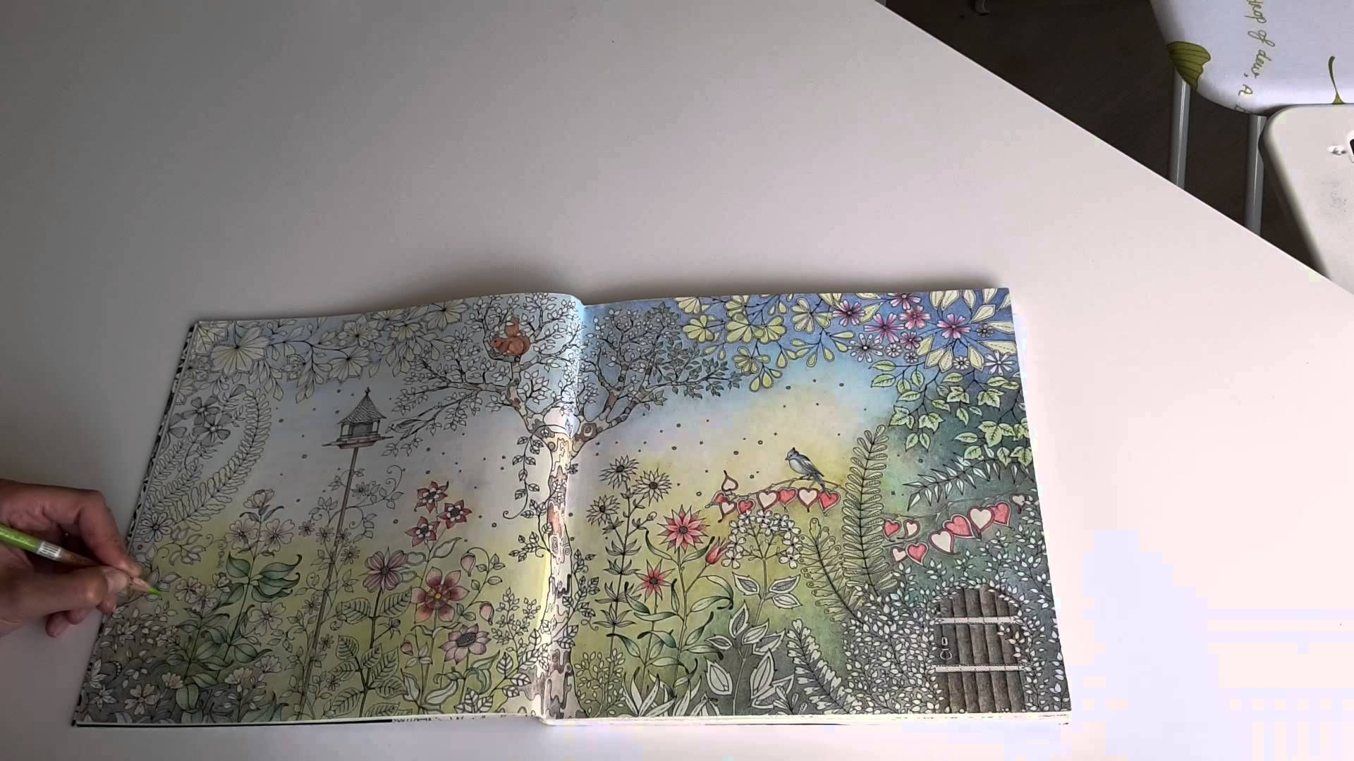 Secret Garden Coloring Book Pens Or Pencils For Pencils