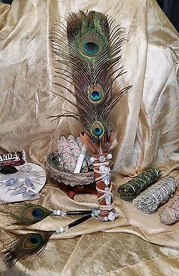 Handcrafted Smudge Fan Kyanite Ward Off Evil Eye California White Sage Kit