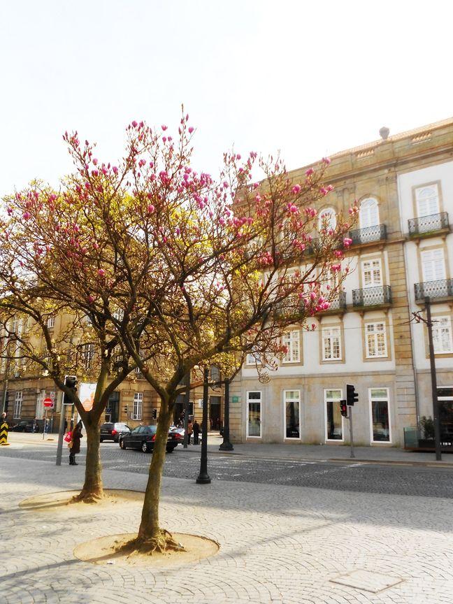 Oporto, Portugal <3
