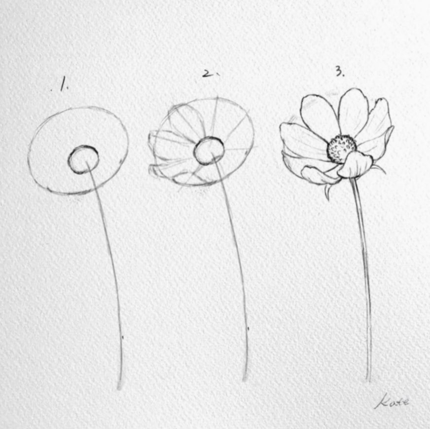 Drawing Flowers Step By Step Beautiful Eyesdrawings Eyedrawingtutorial Eyesart Drawings Flower Drawing Tutorials Art Drawings Simple