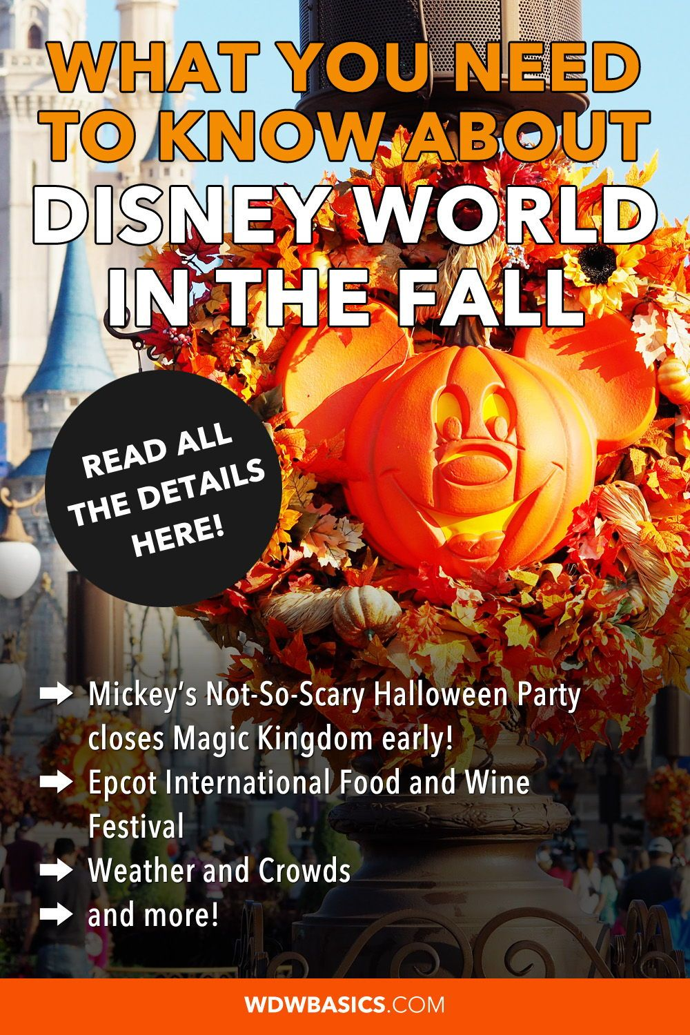 What You Need To Know About Disney World In The Fall In 2020 Disney World Halloween Disney World Rides Disney World Trip