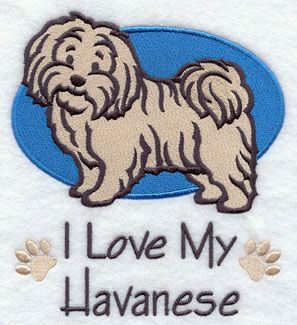 Havanese Machine Embroidery Pattern Google Search With Images