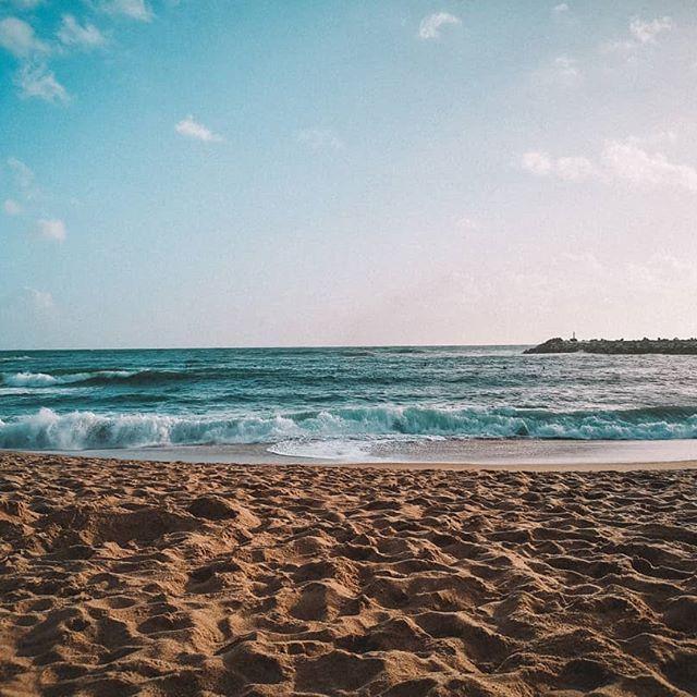 Desejos de um resto de dia cheio de amor gratidão e boa onda! Para mim começa hoje uma...  Desejos de um resto de dia cheio de amor gratidão e boa onda! Para mim começa hoje uma roadtrip  >> Valência . . . . . #photooftheday #goodvibes #roadtrip #viajareviver #viajar #sentir #natureza #travelgirl #travelblogger #pic #earthpix #nature #love #picture #portugal #oceanblue #sand #beach #lovenature #sun #summerday #meninasnaturais #travel #skyporn #motivation #july #mochileiros