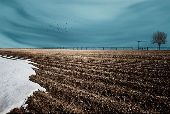 Art of Farmland: Surreal Photos by Lisa Wood