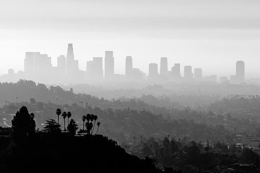 La Smog And Fog Black And White Stock Photo Pollution Winter Air Causes Of Heart Attack