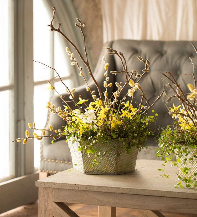 Pussy willow and forsythia branches in a spring for Floral arrangements with branches
