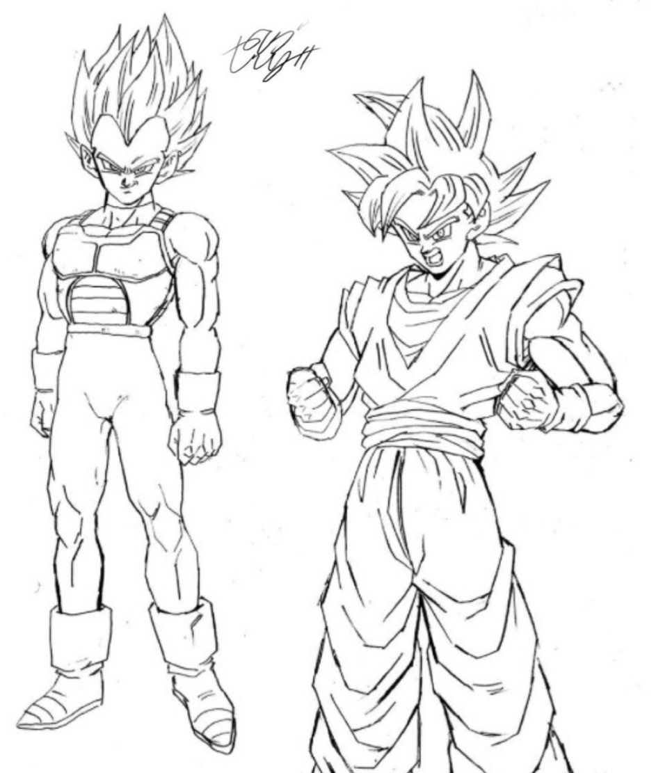 Super Saiyan God Goku And Vegeta Drawn By Young Jijii