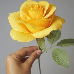How do you like our new crepe paper rose? How do you like our new crepe paper rose? #crepepaperroses How do you like our new crepe paper rose? How do you like our new crepe paper rose? #crepepaperroses How do you like our new crepe paper rose? How do you like our new crepe paper rose? #crepepaperroses How do you like our new crepe paper rose? How do you like our new crepe paper rose? #crepepaperroses