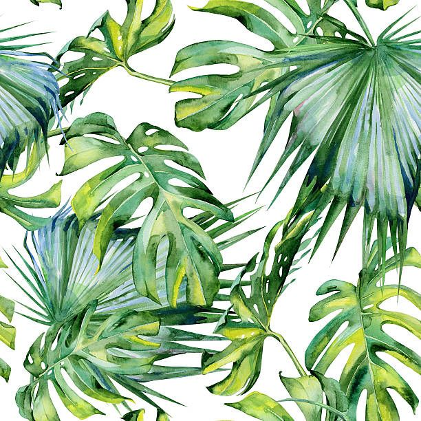 Seamless Watercolor Illustration Of Tropical Leaves Dense