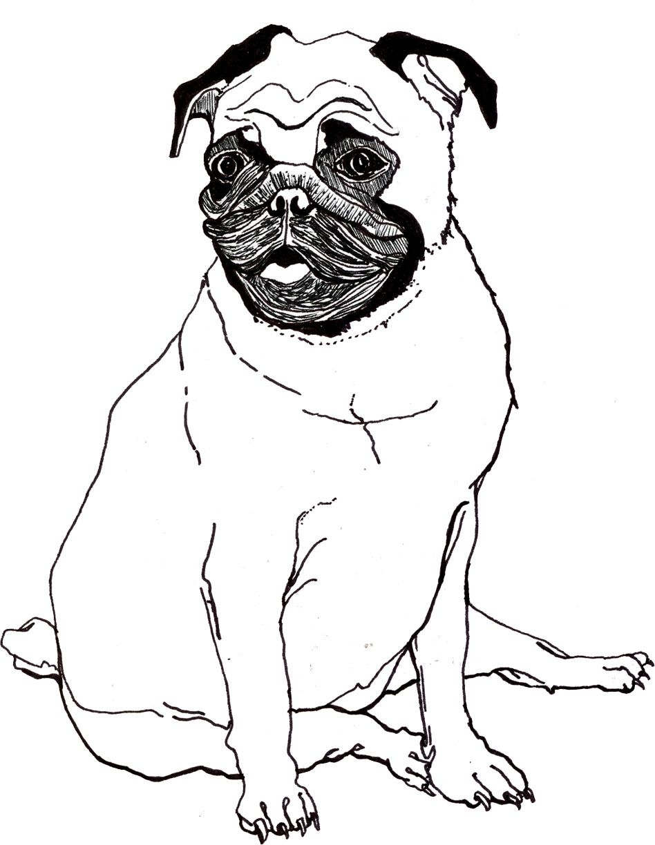 Pug Coloring Pages Dog Coloring Page Dog Drawing For Kids
