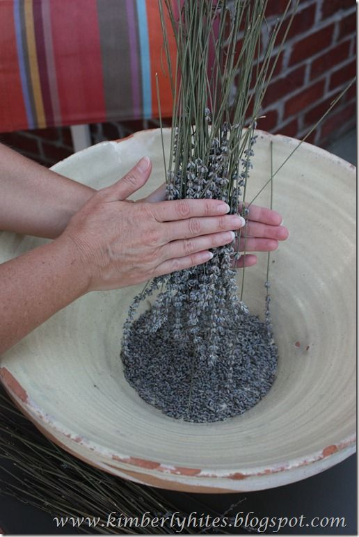 Harvesting and drying lavender. Useful tutorial (this will save you some time).