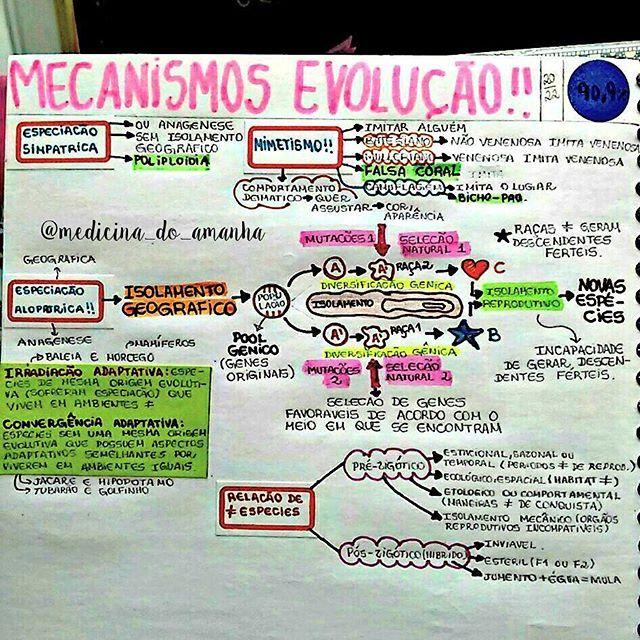 #RESUMO #BIOLOGIA #MECANISMOS #EVOLUÇÃO