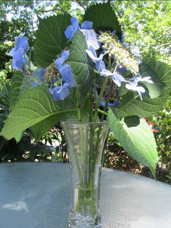 Hoosier Clear Glass Vase # 4040 by NaughtyNelliesAttic on Etsy