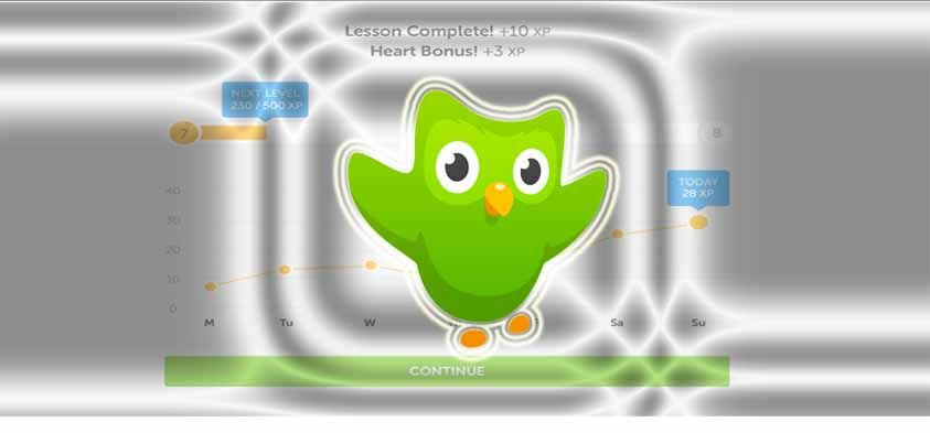 Duolingo APK 3 4 0 Download & Learn Languages Free | Android