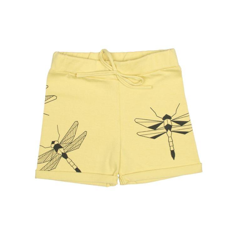 Kollased kiilid// Yellow dragonfly