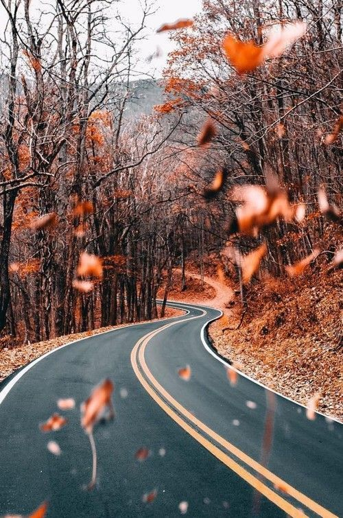Iphone Wallpaper Tumblr Landscape-378 #fallwallpaperiphone #simpleaestheticwallpaper